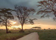 10 Soruda: Tanzanya Turları