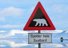 Kuzey Kutbuna Yolculuk – Kuzey Kutbu Turu Anıları