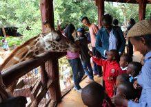 Kenya – Tanzanya – Zanzibar Turu Anıları