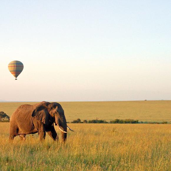 Tanzanya Turları