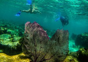Belize Turu – National Geographic Maceraları